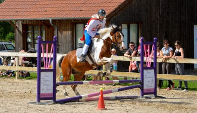 Photos pony games/équifun